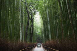 Arashiyama After Hours (Available in the Prints Store)